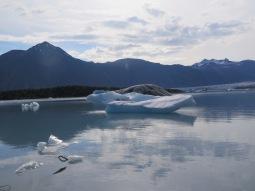 bear glacier,aK.
