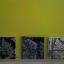 triptic wood panels using gelatin print technique